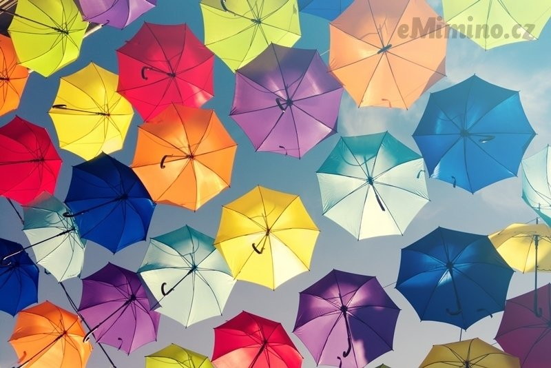 Rozjímání mezi kapkami deště