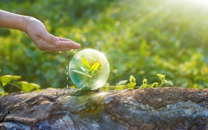 8 eko vychytávek, které šetří přírodu i vaše peníze