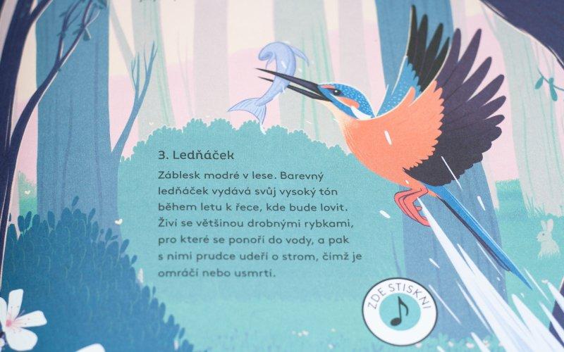Kniha ptáků ukrývá desítky reálných zvuků.