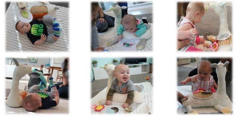 Lama děti baví a ještě rozvíjí jejich smysly a motoriku. Zdroj: Fisher-Price.