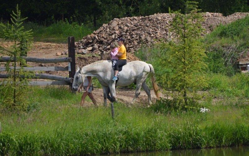 Jízda na koni je fyzioterapeutická metoda, která má skvělé výsledky. Zdroj: hiporehabilitace Mirákl.