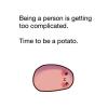 Ikonka uživatele brambourka
